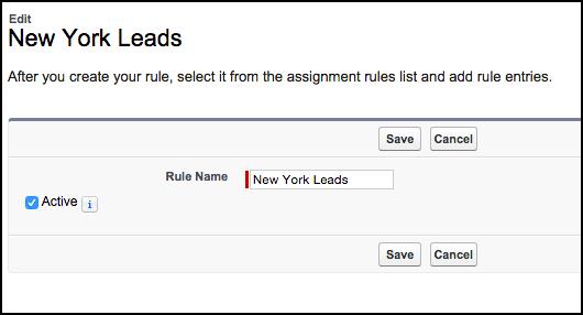 Setting up Lead Assignment Rules - Screenshot
